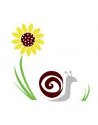 Escargots BIO